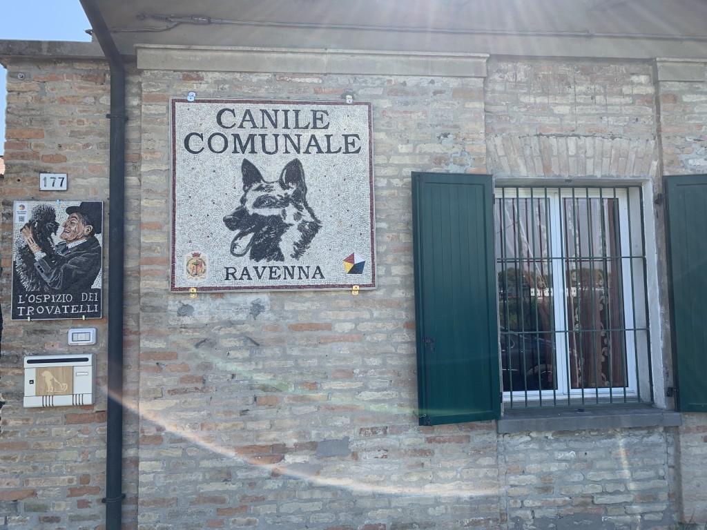Visita guidata al Canile Comunale di Ravenna 25 maggio 2019